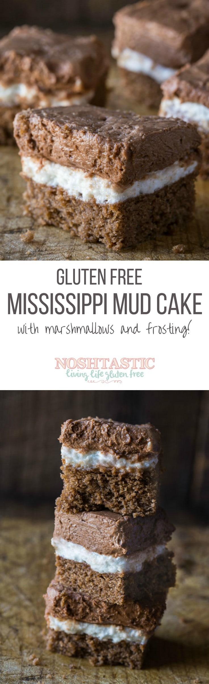 Gluten Dairy Free Chocolate Mud Cake Recipe