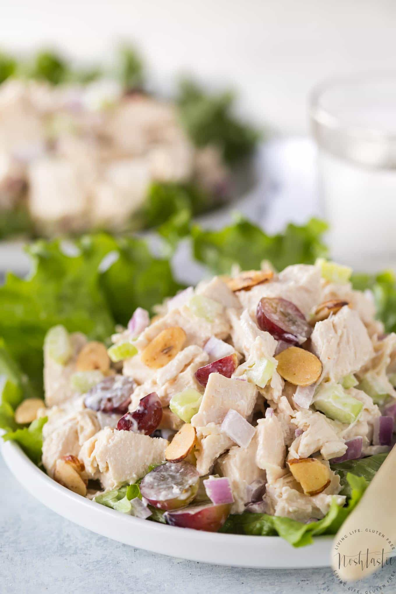 This easy Southern Chicken Salad is a classic American recipe you'll love! gluten free, low carb, healthy, paleo and Whole30 compliant