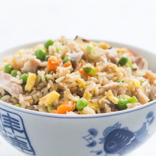 Fried rice in blue and white bowl